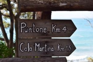 Puntone-CalaMartina-CalaViolina